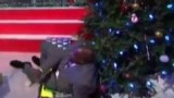 Shaquille O'Neal Crashes into Christmas Tree on TNT Halftime Show